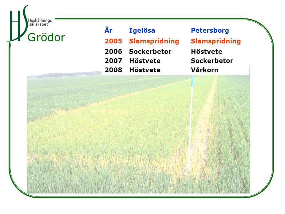 ÅrIgelösaPetersborg 2005Slamspridning 2006 2007 2008 Sockerbetor Höstvete Sockerbetor Vårkorn Grödor