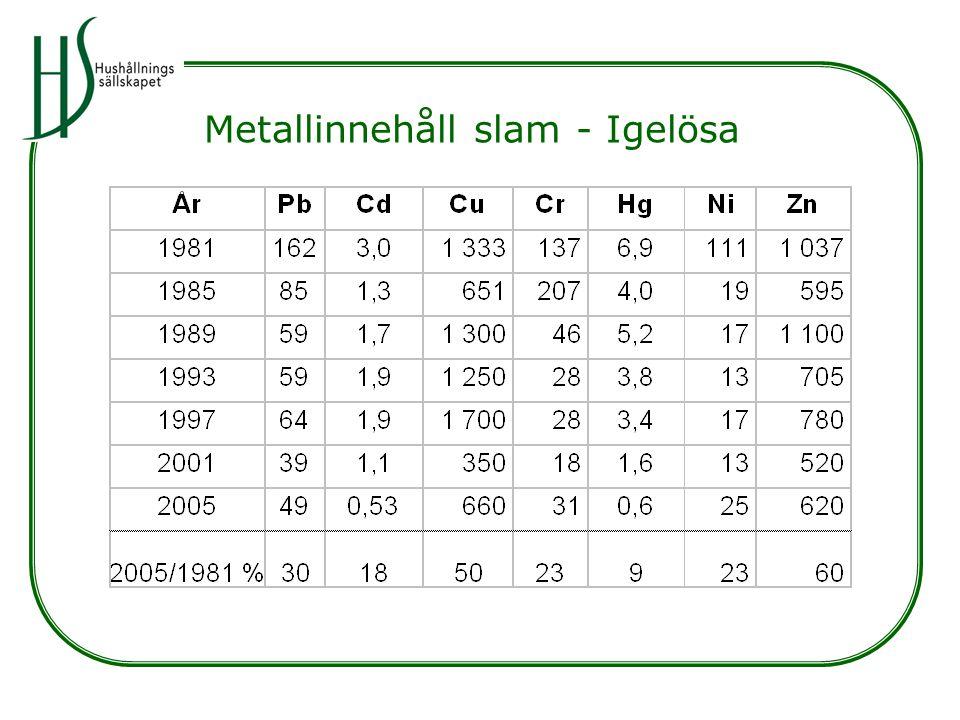 Metallinnehåll slam - Igelösa