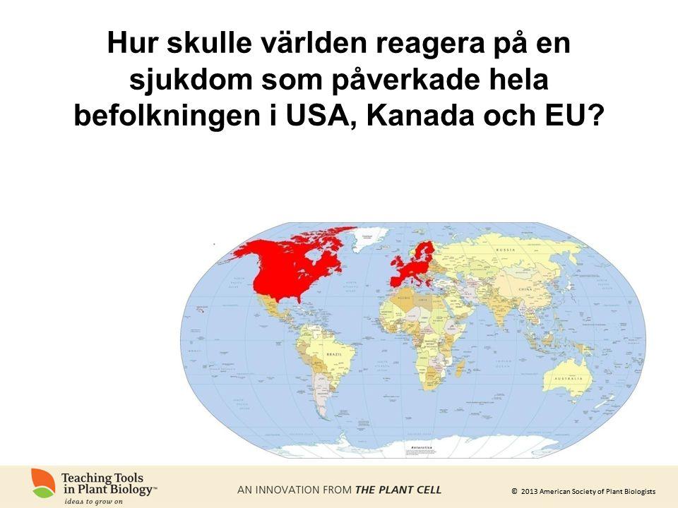 © 2013 American Society of Plant Biologists Hur skulle världen reagera på en sjukdom som påverkade hela befolkningen i USA, Kanada och EU?