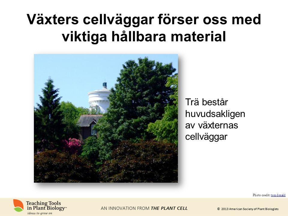 © 2013 American Society of Plant Biologists Växters cellväggar förser oss med viktiga hållbara material Trä består huvudsakligen av växternas cellvägg