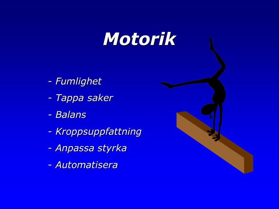 Motorik - Fumlighet - Tappa saker - Balans - Kroppsuppfattning - Anpassa styrka - Automatisera