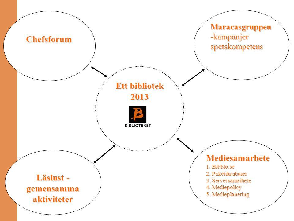 Ett bibliotek 2013 Maracasgruppen -kampanjer spetskompetens Mediesamarbete 1. Bibblo.se 2. Paketdatabaser 3. Serversamarbete 4. Mediepolicy 5. Mediepl