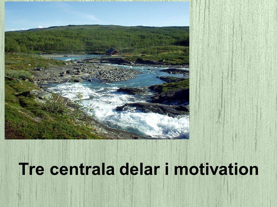 Tre centrala delar i motivation