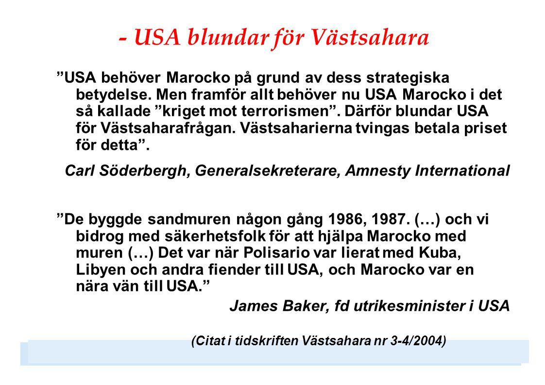 """- USA blundar för Västsahara """"USA behöver Marocko på grund av dess strategiska betydelse. Men framför allt behöver nu USA Marocko i det så kallade """"kr"""