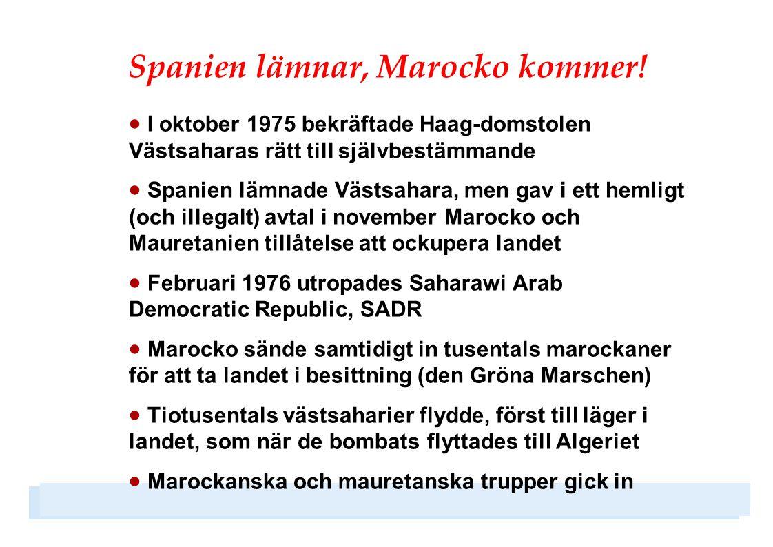 Internationella dragkampen  Redan från början bröt Marocko mot planen: stoppade transporter, bombade befriade områden, krävde rösträtt åt nya grupper och lät 40 000 marockaner invandra  Även FN föreslog ändringar i rösträtten, och tvingade Polisario till upprepade eftergifter  Marocko tilläts styra Minursos arbete, och utövade terror mot västsaharierna i landet  Kofi Annan blåste 1997 nytt liv i processen, med ett nytt avtal i Houston  Nytt datum för folkomröstningen blev december 1998  Men Marockos obstruktioner har sedan fortsatt