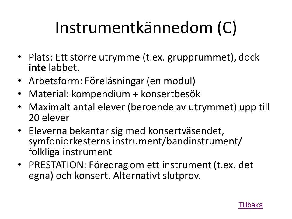Instrumentkännedom (C) • Plats: Ett större utrymme (t.ex.