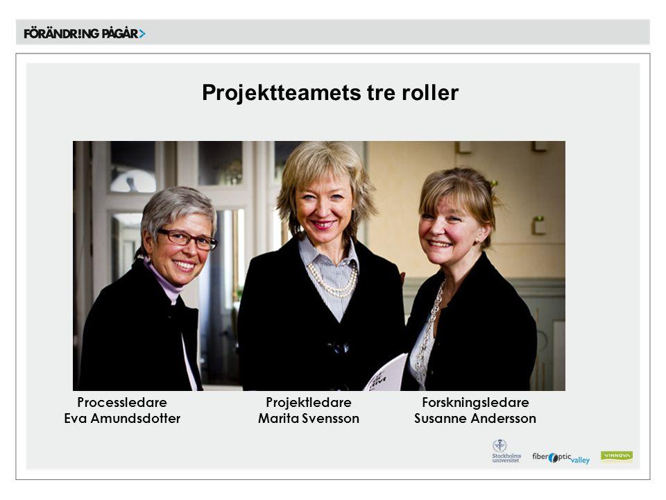 Projektteamets tre roller Processledare Eva Amundsdotter Projektledare Marita Svensson Forskningsledare Susanne Andersson