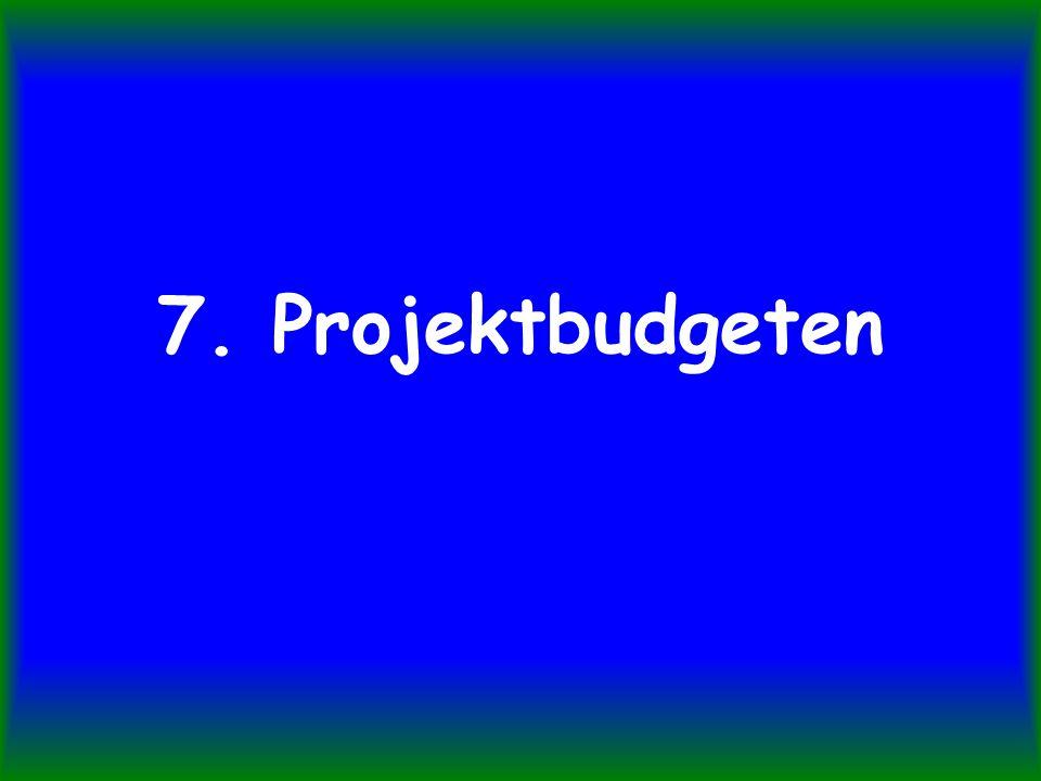 7. Projektbudgeten