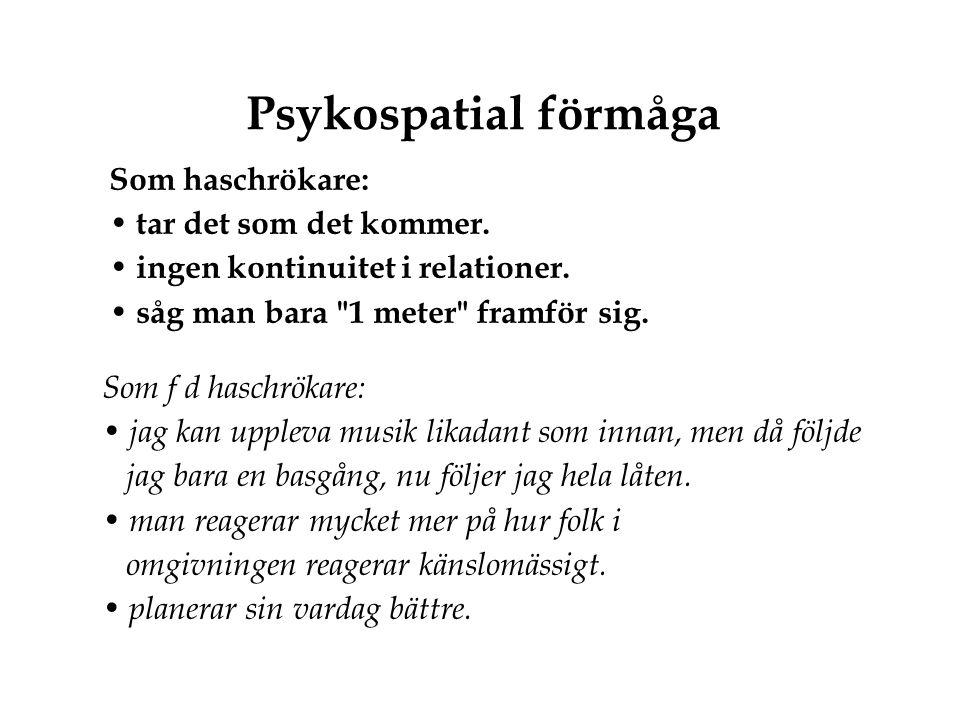 Psykospatial förmåga Som haschrökare: • tar det som det kommer. • ingen kontinuitet i relationer. • såg man bara