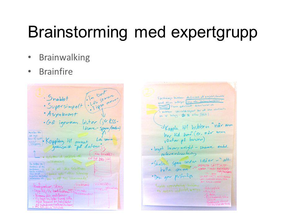 Brainstorming med expertgrupp • Brainwalking • Brainfire