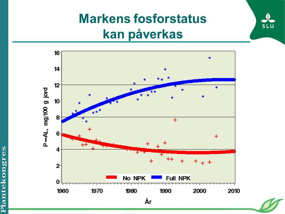 Markens fosforstatus kan påverkas