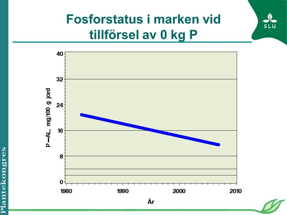 Fosforstatus i marken vid tillförsel av 0 kg P