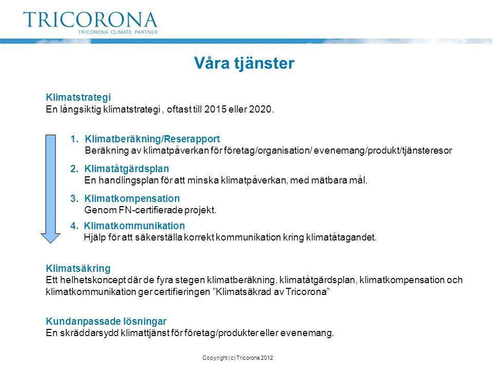 Klimatstrategi En långsiktig klimatstrategi, oftast till 2015 eller 2020. 1.Klimatberäkning/Reserapport Beräkning av klimatpåverkan för företag/organi