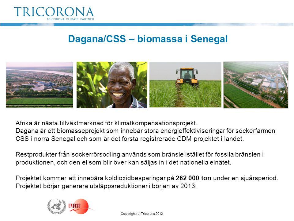 Afrika är nästa tillväxtmarknad för klimatkompensationsprojekt. Dagana är ett biomasseprojekt som innebär stora energieffektiviseringar för sockerfarm