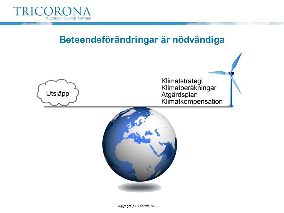 Beräkna Klimatberäkning Beräkna Klimatberäkning Reducera Klimatplan Reducera Klimatplan Kompensera CDM/Gold Standard Kompensera CDM/Gold Standard Inspirera Kommunikation Inspirera Kommunikation Copyright (c) Tricorona 2012 Så här arbetar vi