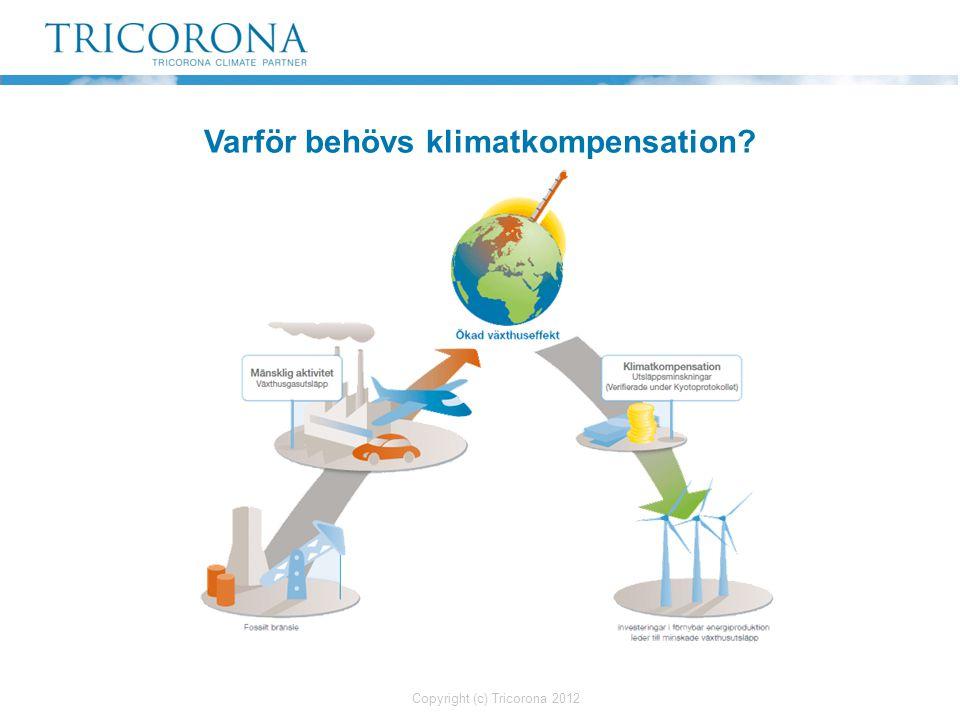 Klimatstrategi En långsiktig klimatstrategi, oftast till 2015 eller 2020.