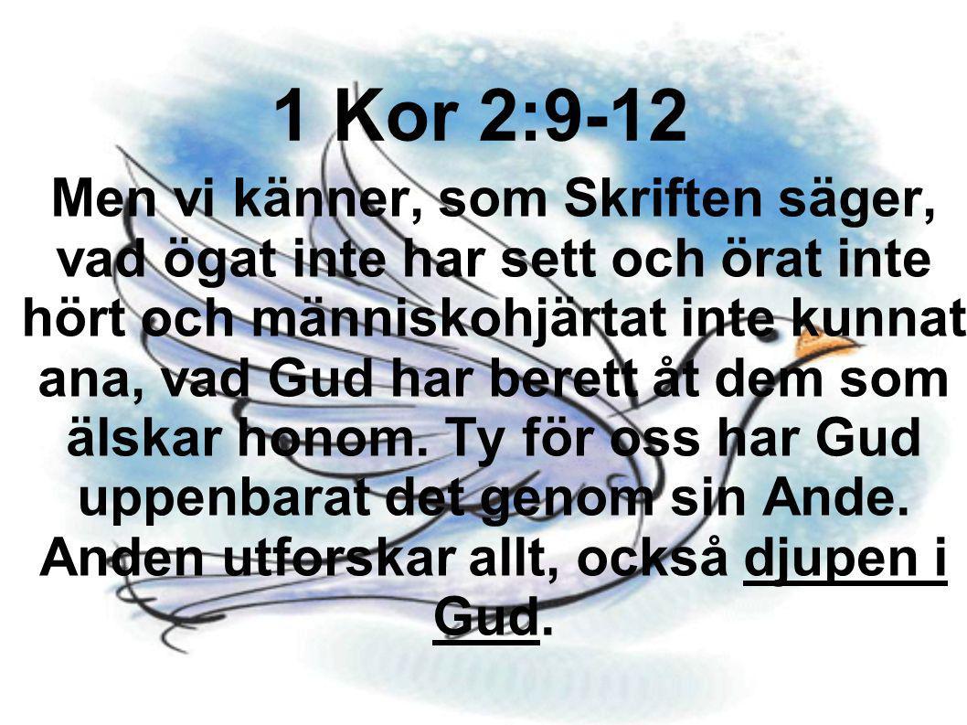 Men vi känner, som Skriften säger, vad ögat inte har sett och örat inte hört och människohjärtat inte kunnat ana, vad Gud har berett åt dem som älskar
