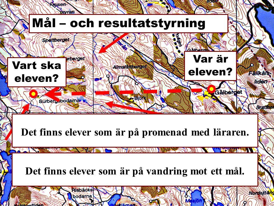 Exempel på planering - SO I arbetet kommer följande att bedömas: Kommunikativ förmåga - Textens bearbetning.