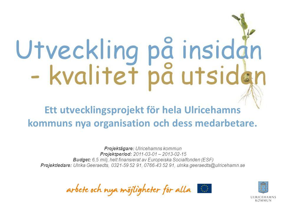 Vision för nya organisationen: Ulricehamns kommun ska vara en öppen och modern organisation där medarbetares kompetens tas tillvara i ett tydligt kundperspektiv. Ledord: samverkan, helhetssyn, bästa möjliga service