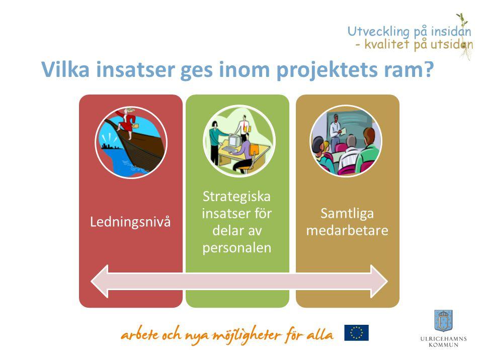 Vilka insatser ges inom projektets ram.