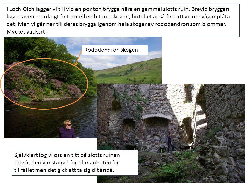 I Loch Oich lägger vi till vid en ponton brygga nära en gammal slotts ruin. Brevid bryggan ligger även ett riktigt fint hotell en bit in i skogen, hot