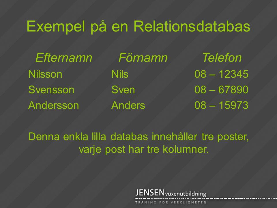 Exempel på en Relationsdatabas EfternamnFörnamnTelefon NilssonNils08 – 12345 SvenssonSven08 – 67890 AnderssonAnders08 – 15973 Denna enkla lilla databa
