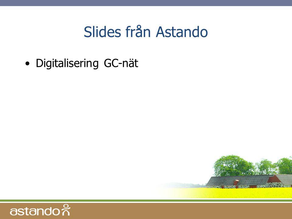 Slides från Astando •Digitalisering GC-nät
