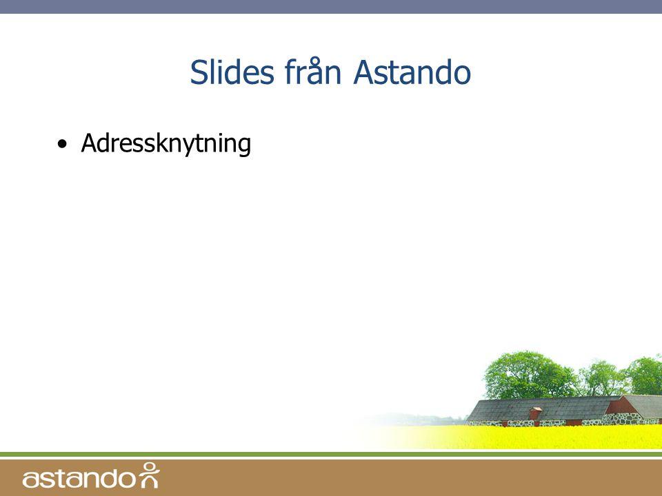 Slides från Astando •Adressknytning