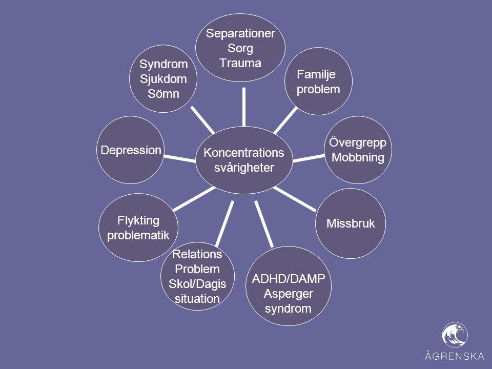 STRATEGIER •Kunskap om funktionshindret •Grundsyn •Individualisera •Hjälpmedel för att kompensera försvårigheterna •Förhållningssätt: Respektfullt, tydligt, annorlunda och otraditionellt •Organisation