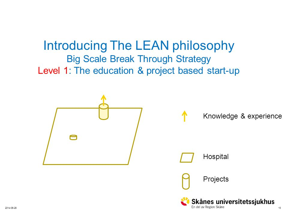 132014-06-26 Hospital Projects Knowledge & experience Introducing The LEAN philosophy Big Scale Break Through Strategy Level 1: The education & project based start-up