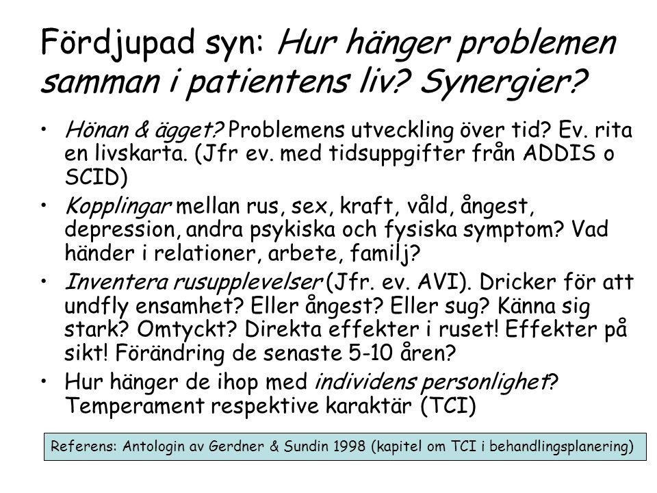 Fördjupad syn: Hur hänger problemen samman i patientens liv.