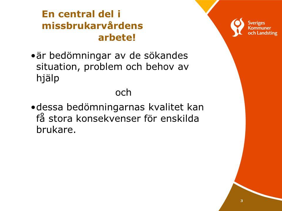 3 En central del i missbrukarvårdens arbete! •är bedömningar av de sökandes situation, problem och behov av hjälp och •dessa bedömningarnas kvalitet k