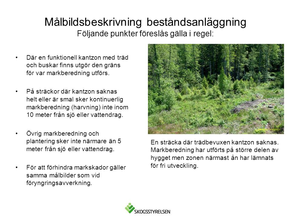 •Där en funktionell kantzon med träd och buskar finns utgör den gräns för var markberedning utförs. •På sträckor där kantzon saknas helt eller är smal