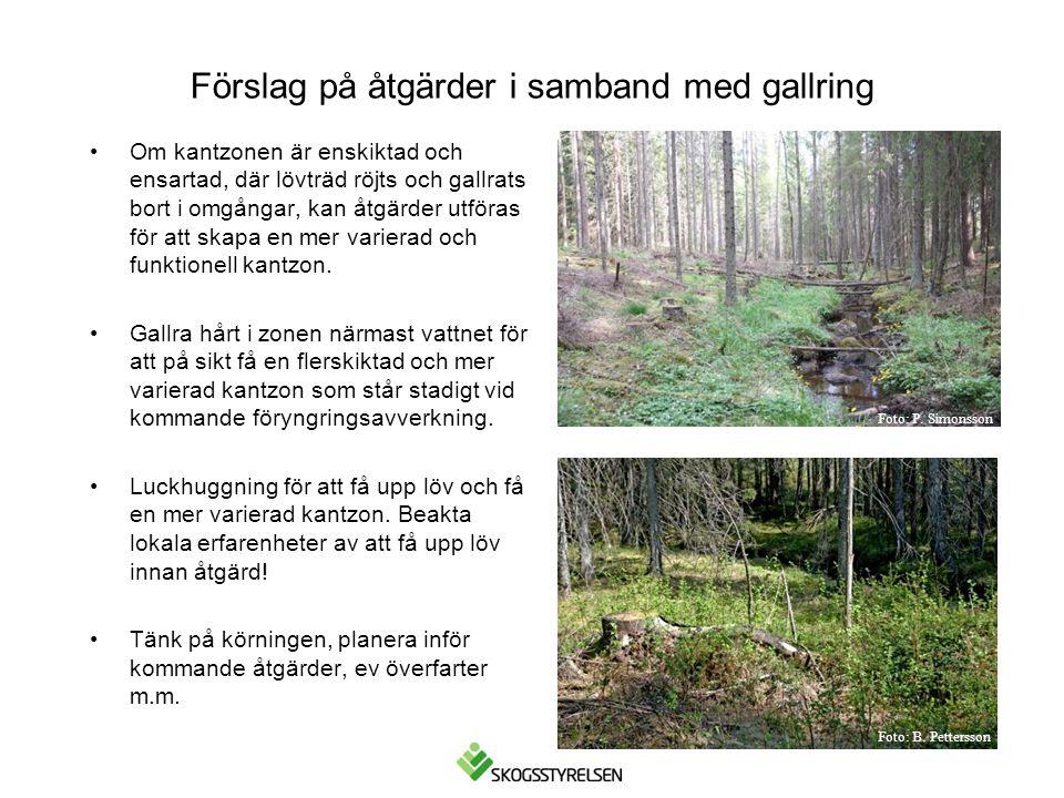 Förslag på åtgärder i samband med gallring •Om kantzonen är enskiktad och ensartad, där lövträd röjts och gallrats bort i omgångar, kan åtgärder utför