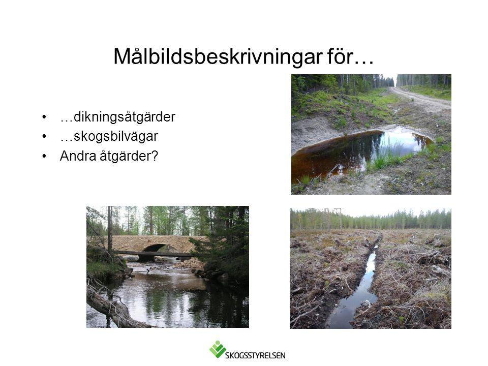 Målbildsbeskrivningar för… •…dikningsåtgärder •…skogsbilvägar •Andra åtgärder?