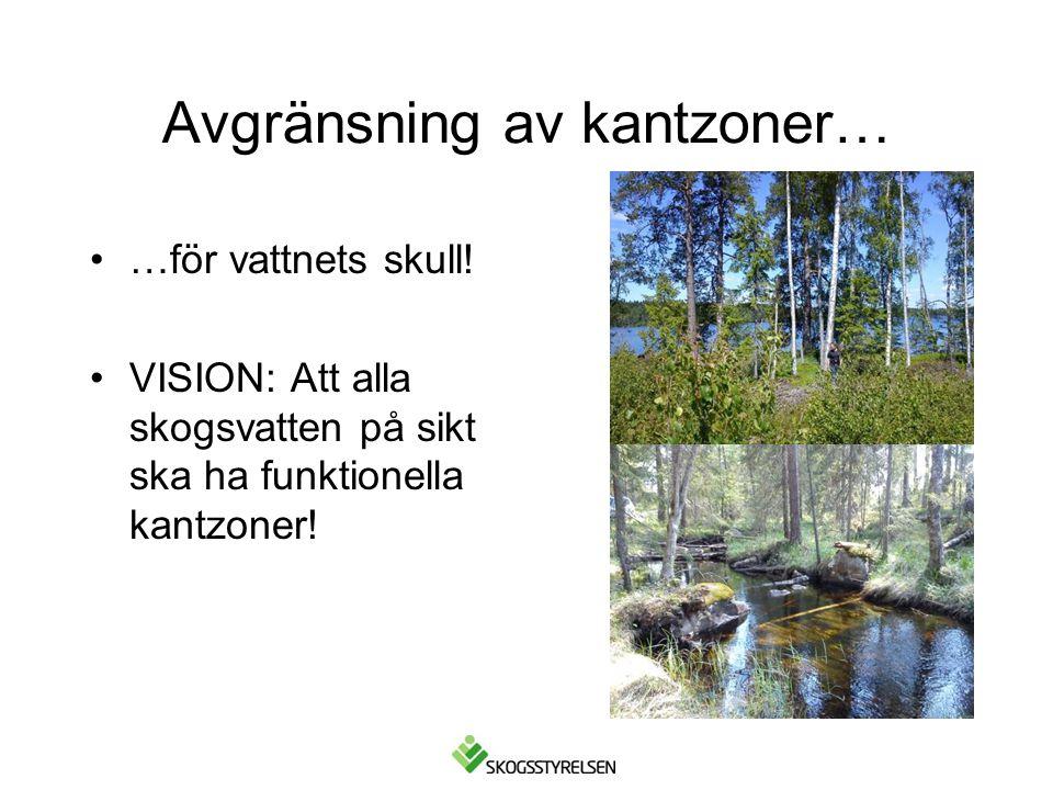 Avgränsning av kantzoner… •…för vattnets skull! •VISION: Att alla skogsvatten på sikt ska ha funktionella kantzoner!