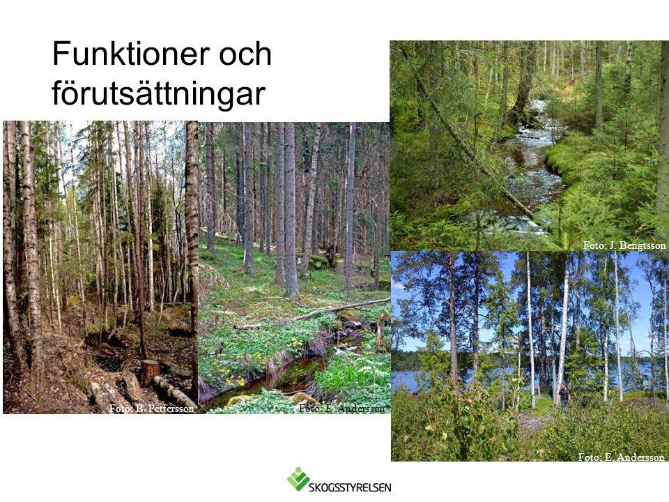 Förslag på åtgärder i samband med gallring •Om kantzonen är enskiktad och ensartad, där lövträd röjts och gallrats bort i omgångar, kan åtgärder utföras för att skapa en mer varierad och funktionell kantzon.