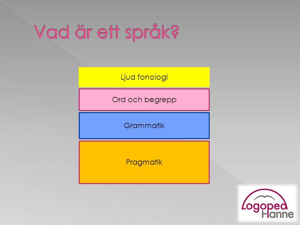 Ljud fonologi Ord och begrepp Grammatik Pragmatik