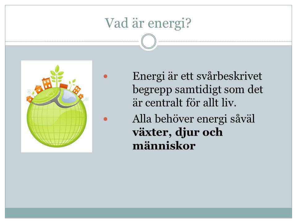 Vad är energi?  Energi är ett svårbeskrivet begrepp samtidigt som det är centralt för allt liv.  Alla behöver energi såväl växter, djur och människo