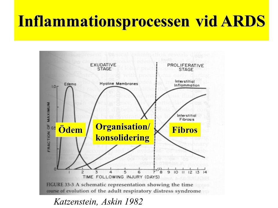 Inflammationsprocessen vid ARDS Katzenstein, Askin 1982 ÖdemFibros Organisation/konsolidering