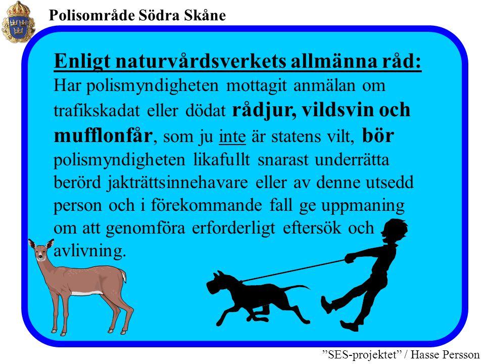 """Polisområde Södra Skåne """"SES-projektet"""" / Hasse Persson Naturvårdsverkets föreskrift § 38 Har fredat djur enligt § 33 t ex älg eller hjort (statens vi"""