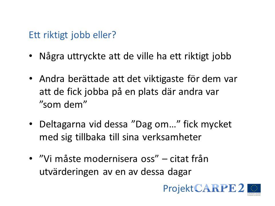 Projekt • Några uttryckte att de ville ha ett riktigt jobb Ett riktigt jobb eller? • Andra berättade att det viktigaste för dem var att de fick jobba