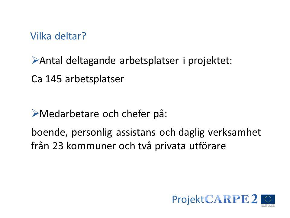 Projekt  Antal deltagande arbetsplatser i projektet: Ca 145 arbetsplatser  Medarbetare och chefer på: boende, personlig assistans och daglig verksam