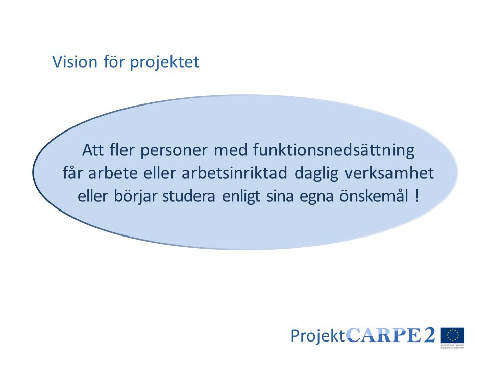 Projekt Att fler personer med funktionsnedsättning får arbete eller arbetsinriktad daglig verksamhet eller börjar studera enligt sina egna önskemål !