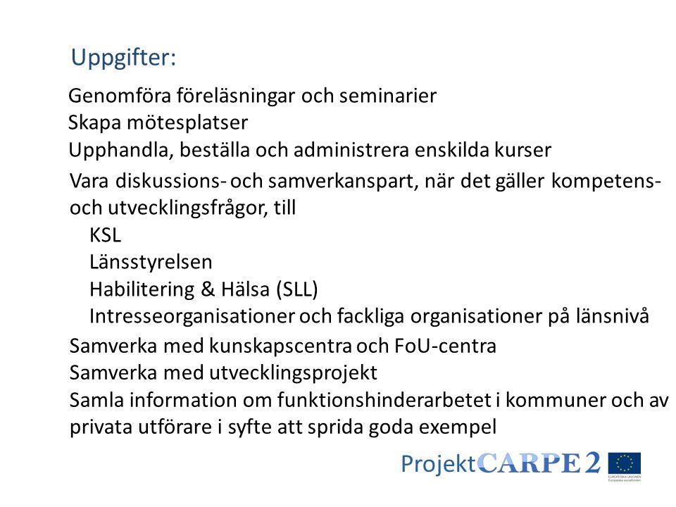 Projekt Genomföra föreläsningar och seminarier Skapa mötesplatser Upphandla, beställa och administrera enskilda kurser Uppgifter: Vara diskussions- oc