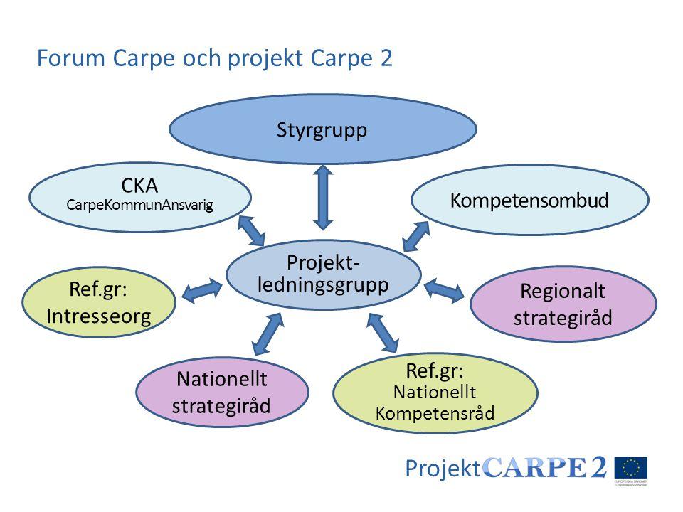Projekt Styrgrupp Kompetensombud Regionalt strategiråd Nationellt strategiråd Projekt- ledningsgrupp CKA CarpeKommunAnsvarig Ref.gr: Intresseorg Ref.g