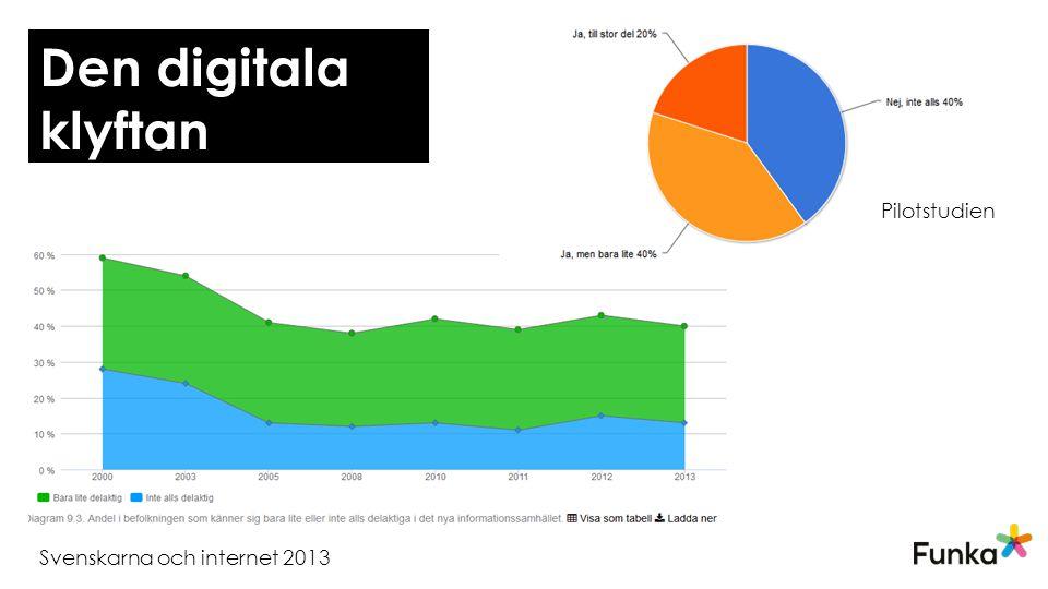 Svenskarna och internet 2013 Pilotstudien Den digitala klyftan