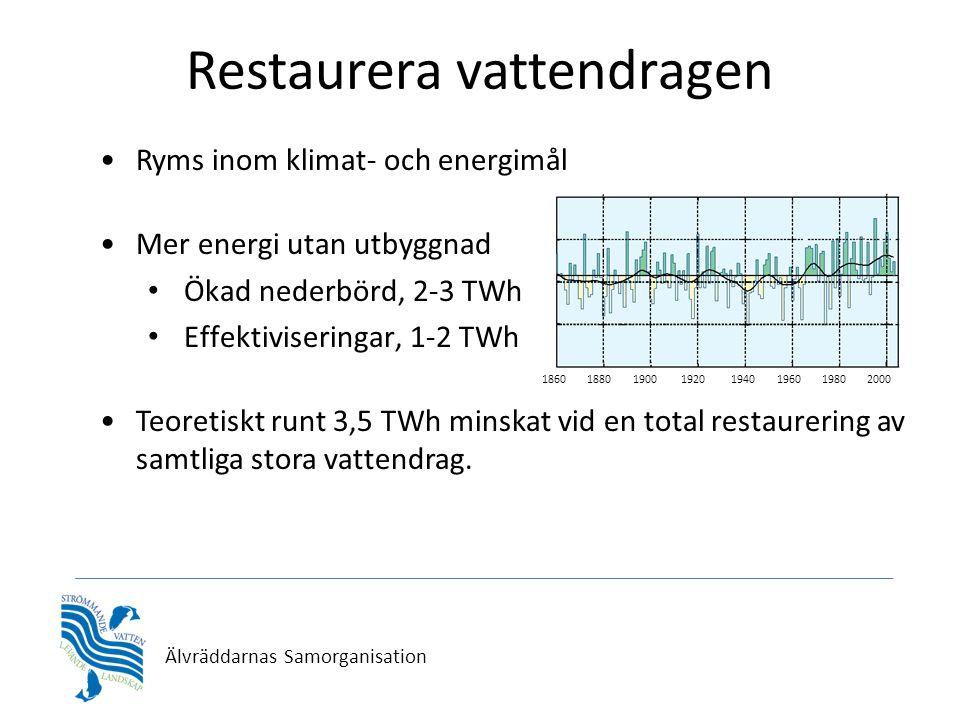 Älvräddarnas Samorganisation Restaurera vattendragen •Ryms inom klimat- och energimål •Mer energi utan utbyggnad • Ökad nederbörd, 2-3 TWh • Effektiviseringar, 1-2 TWh •Teoretiskt runt 3,5 TWh minskat vid en total restaurering av samtliga stora vattendrag.