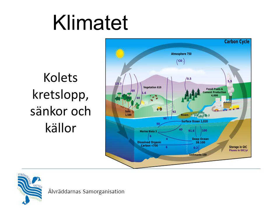 Älvräddarnas Samorganisation Kolets kretslopp, sänkor och källor Klimatet