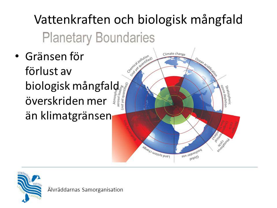Vattenkraften och biologisk mångfald • Gränsen för förlust av biologisk mångfald överskriden mer än klimatgränsen Älvräddarnas Samorganisation